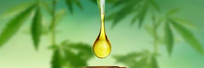 cbd-olie-smaak