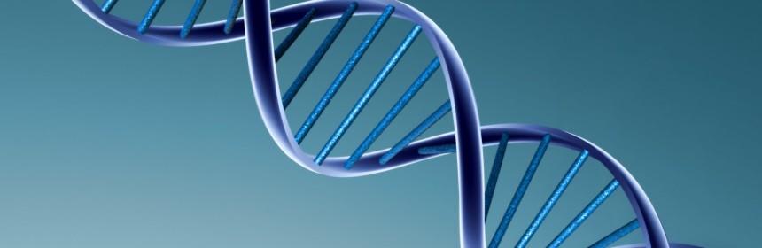 genetik d